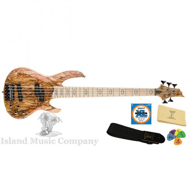 Custom ESP LTD RB-1005 5 String Electric Bass Natural Finish #1 image