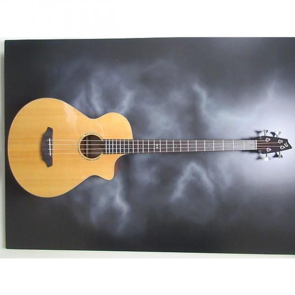 Custom Breedlove BJ350 #1 image