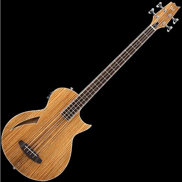 Custom ESP LTD TL-4Z Thinline Acoustic Electric Bass in Natural Finish #1 image