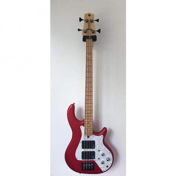 Custom Enfield Guitars : Lionheart Standard #1 image