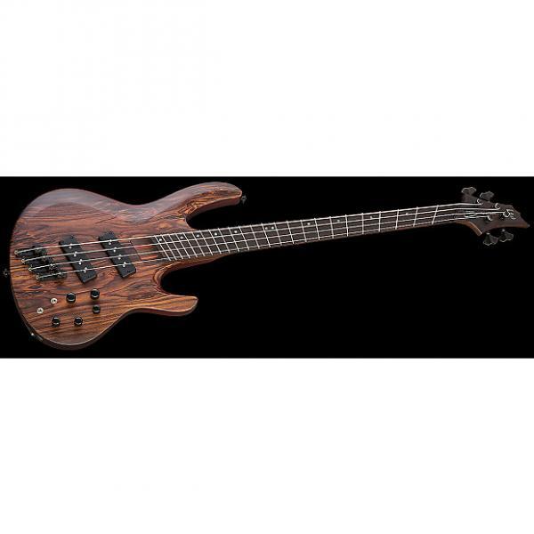 Custom ESP LTD B-1004SE Multi Scale Electric Bass in Natural Satin #1 image