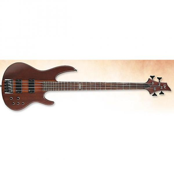 Custom ESP LTD D-4 Bass in Natural Stain #1 image