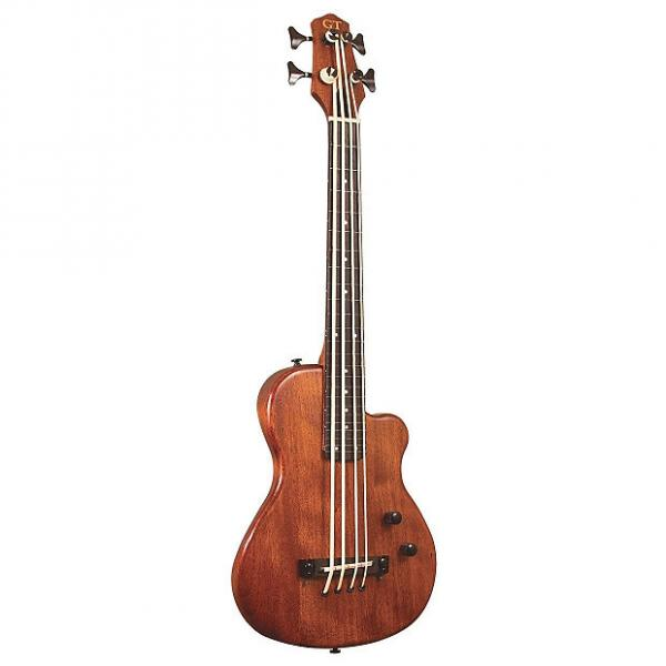 Custom Gold Tone ME-Bass, 23-Inch Scale Electric MicroBass, Fretless, with Gig Bag #1 image