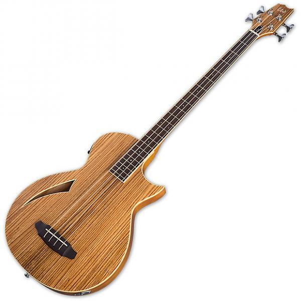 Custom ESP LTD TL-4S Z Natural(LTL4ZNAT) Electric Guitar #1 image