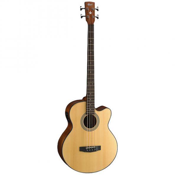 Custom Cort SJB5F Acoustic/Electric Bass Guitar #1 image