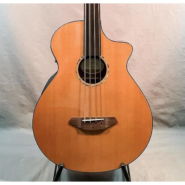Custom Breedlove Solo Fretless Acoustic Bass #1 image