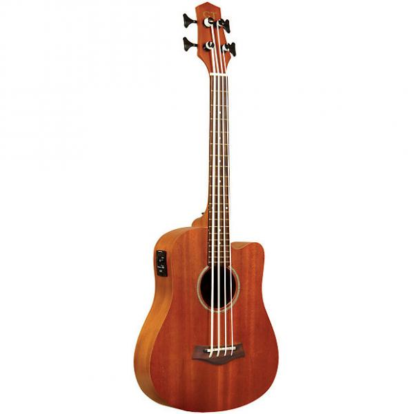 Custom Gold Tone M-Bass Fretless Acoustic Electric MicroBass incl Gig Bag #1 image