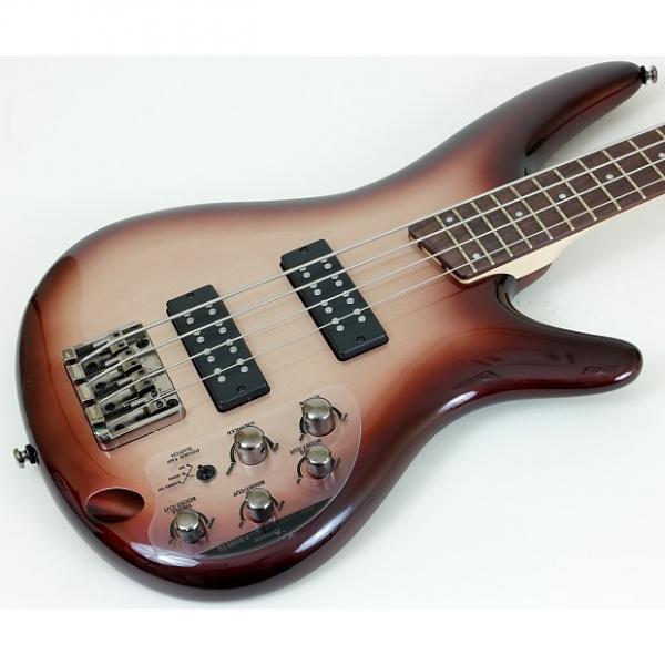 Custom Ibanez SR300E SR Series Bass Guitar - Charred Champagne Burst #1 image