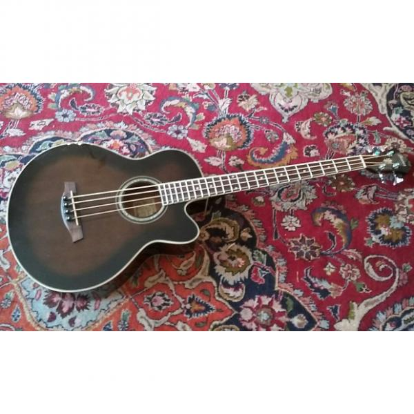 Custom Ibanez Acoustic Electric Bass Factory Second #1 image