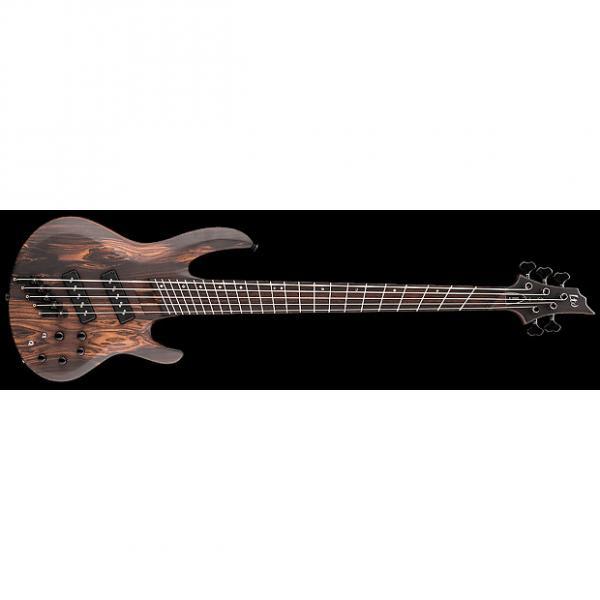 Custom ESP LTD B-1005SE Multi-Scale 5-String Swamp Ash Body Electric Bass Natural Satin #1 image