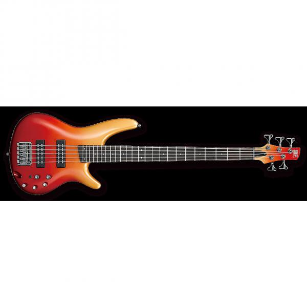 Custom Ibanez SR305EAFM SR Standard 5-string Electric Bass Guitar Autumn Fade Metallic #1 image