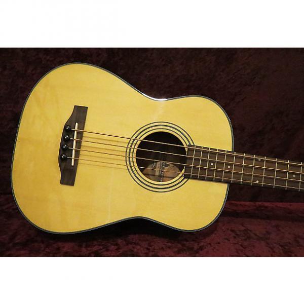 Custom Timberidge Mini Acoustic Bass. NEW! #1 image