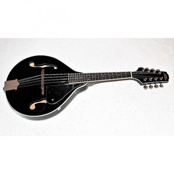 Custom Stadium M-10 BK Black A-Style Mandolin #1 image