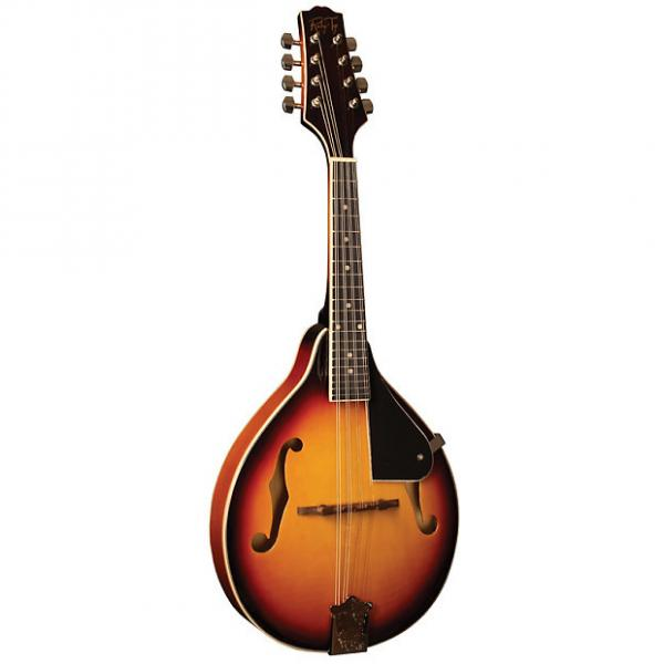 Custom Morgan Rocky Top A-Style Mandolin #1 image