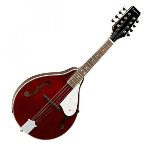 Custom Tanglewood TWM-T-WR Mandolin #1 image