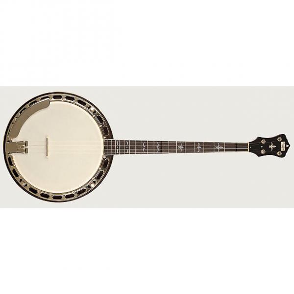 Custom Recording King Madison Tenor Resonator Banjo #1 image