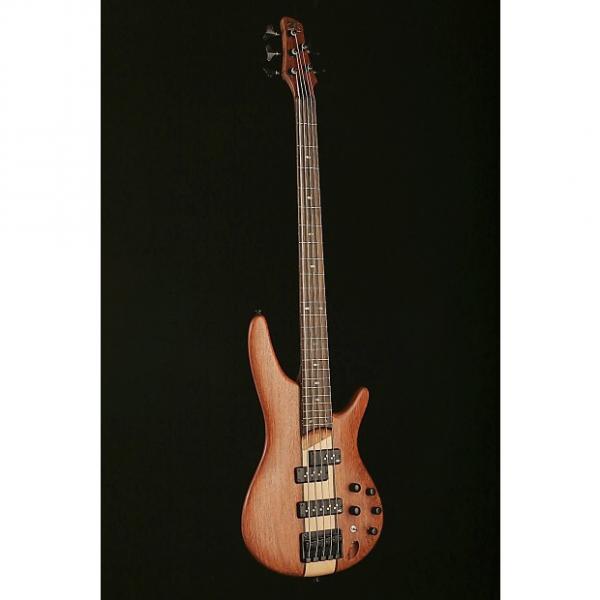 Custom Ibanez SR750 4 String Bass - SR750 #1 image