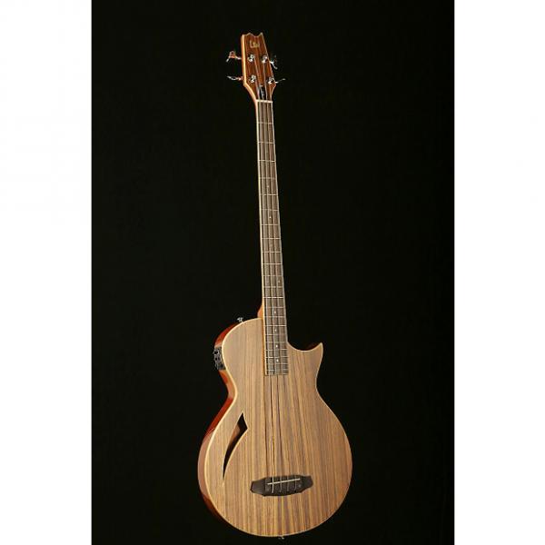 Custom LTD TL-4Z Thinline Bass #1 image
