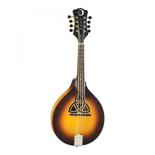 Custom LUNA Trinity A-style MANDOLIN new Solid Spruce Top - Solid Maple Back and Sides #1 image