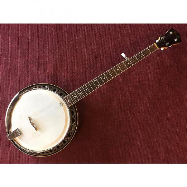 Custom Fender Allegro 5 String Banjo 1967-9 #1 image