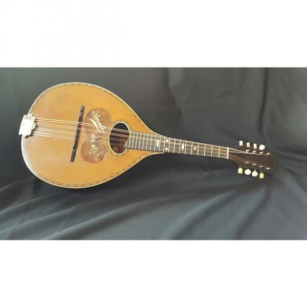 Custom Vega  Amati Mandolin  20s #1 image