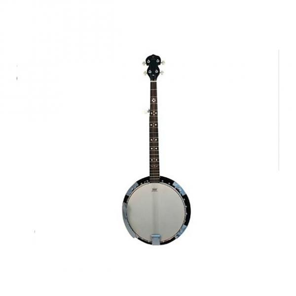 Custom Danville Banjo 24 Bracket, Inlaid Mother of Pearl, Sealed 5th Gear Bound Rose Wood Fret Board #BJ-24 #1 image