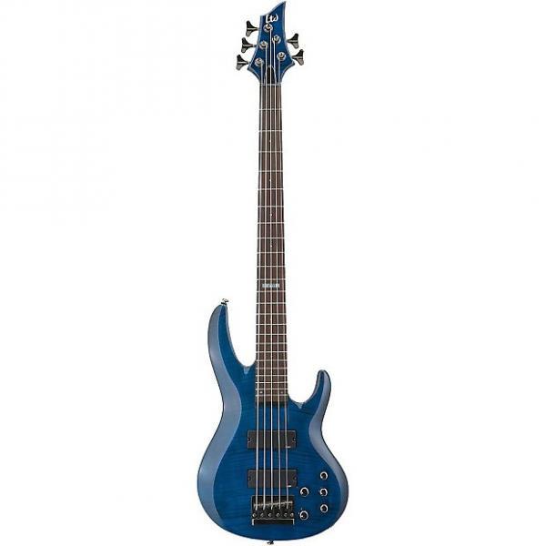 Custom ESP LTD B-155DX 5-String Electric Bass #1 image