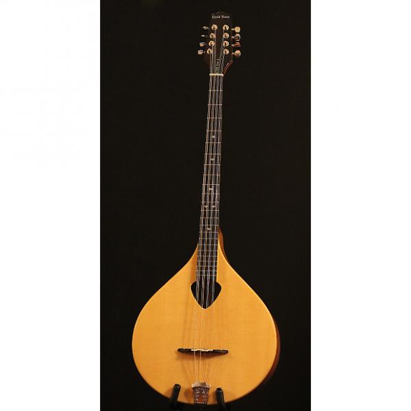 Custom Gold Tone BZ-500 Bouzouki Mandolin *Hardshell Case* #1 image