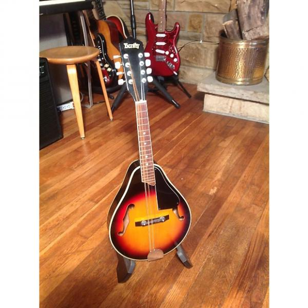 Custom Bently B405 mandolin #1 image