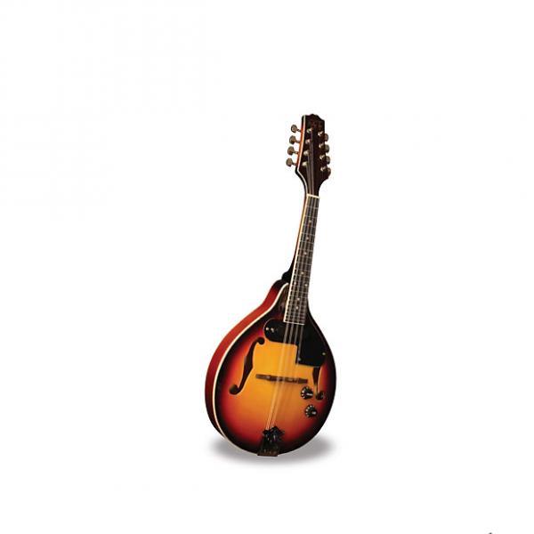 Custom Morgan Monroe Electric Mandolin Its like nothing else  MODEL: RT-M1E Electric #1 image