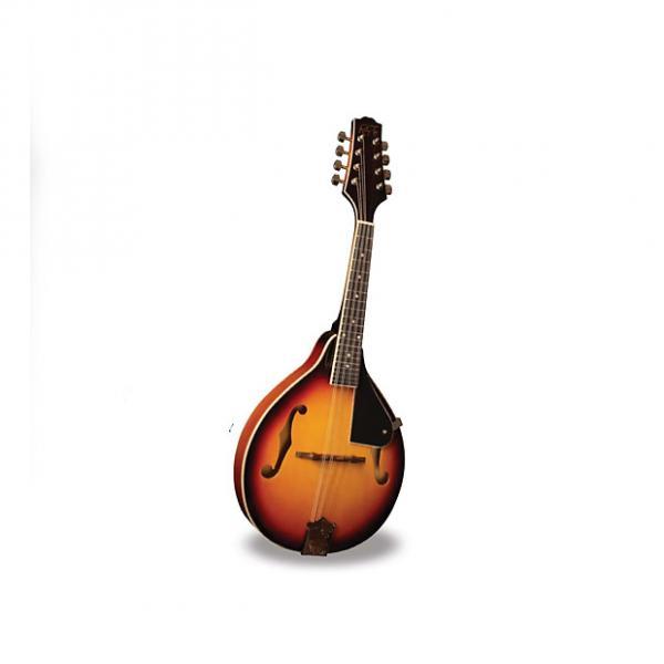 Custom Morgan Monroe - Mandolin Its like nothing else  MODEL: RT-M1 #1 image
