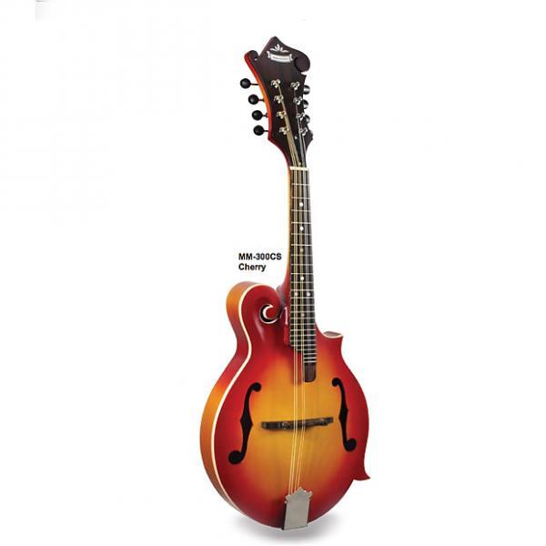 Custom Morgan Monroe Mandolin Its like nothing else (Cherry) MODEL: MM-300CS #1 image