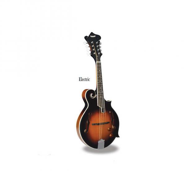 Custom Morgan Monroe - Mandolin (Electric) Its like nothing else  MM-100FME #1 image