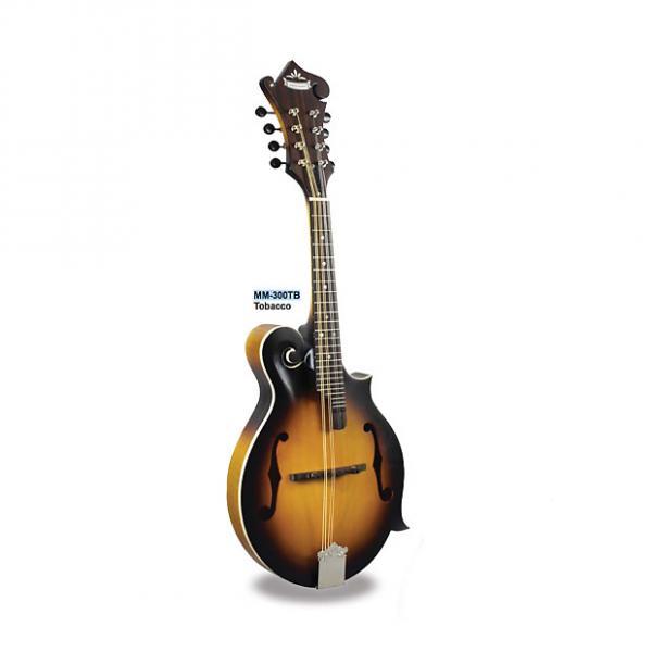 Custom Morgan Monroe Mandolin Its like nothing else - MODEL: MM-300TB #1 image