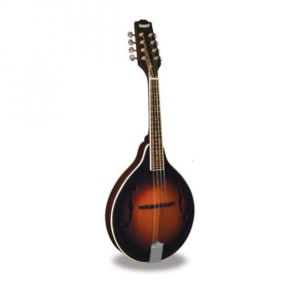 Custom Morgan Monroe - Mandolin Its like nothing else  MM-100AM #1 image