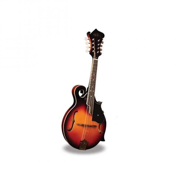 Custom Morgan Monroe - Mandolin Its like nothing else  MODEL: RT-FM1 #1 image