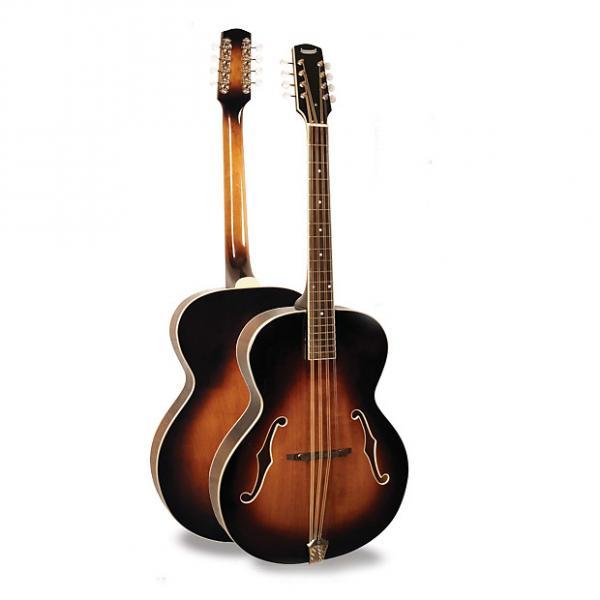 Custom Morgan Monroe Mandolin Its like nothing else - MODEL: MM-MC100 #1 image