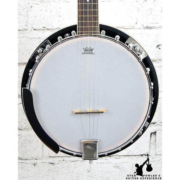 Custom Ibanez B50 5-String Banjo Natural #1 image