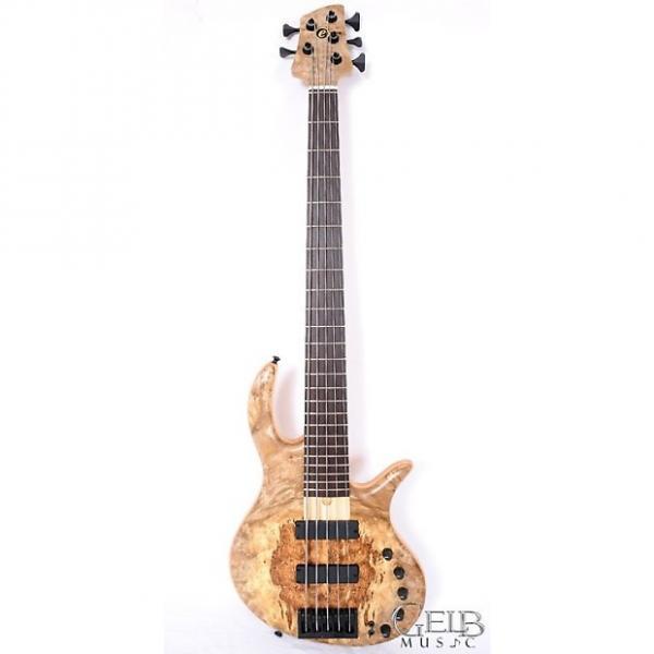 Custom Elrick Gold Series E-Volution Bolt On 5 String Electric Bass, Bartolini Soapbars W/Case - FSR-E-3215 #1 image