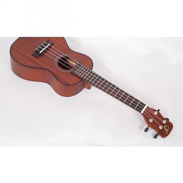 Custom Journey Instruments UC310 Concert Ukulele Solid Mahogany Top / Sapele Back & Sides With Case #1 image