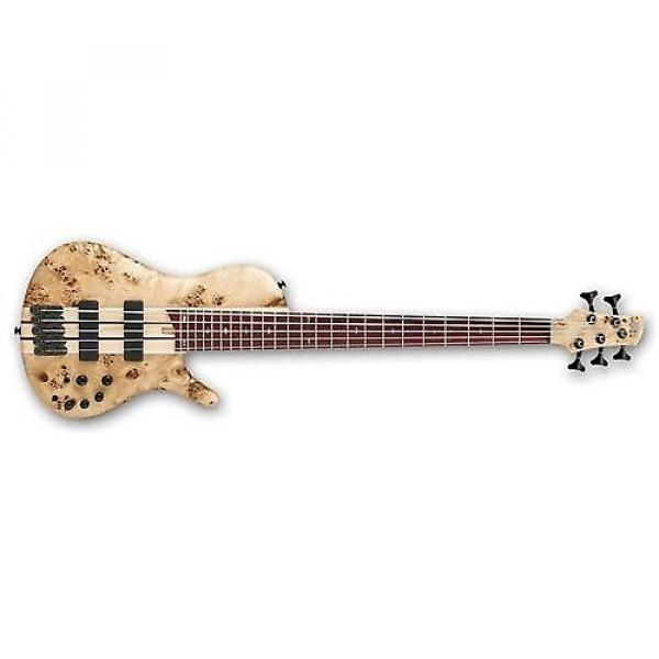 Custom Ibanez Bass Workshop SRSC805 5-String Bass (Natural Flat) Used #1 image