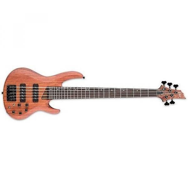 Custom ESP LTD B-1005SE 5-String Bass Used #1 image