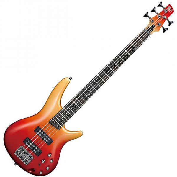 Custom Ibanez SR305E AFM SR Standard 5-string Electric Bass - Autumn Fade Metallic #1 image