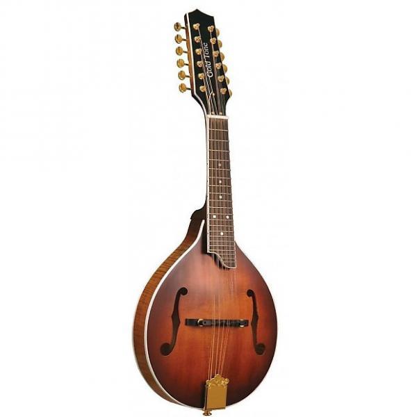 Custom Gold Tone GM-12+ Mandoline 12 cordes (+ étui) #1 image