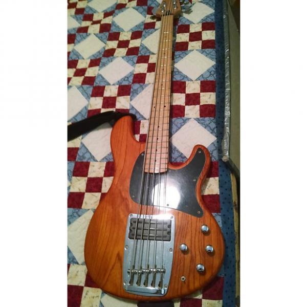 Custom MIJ Ibanez ATK 305 1994 woodgrain (almost vintage!) #1 image
