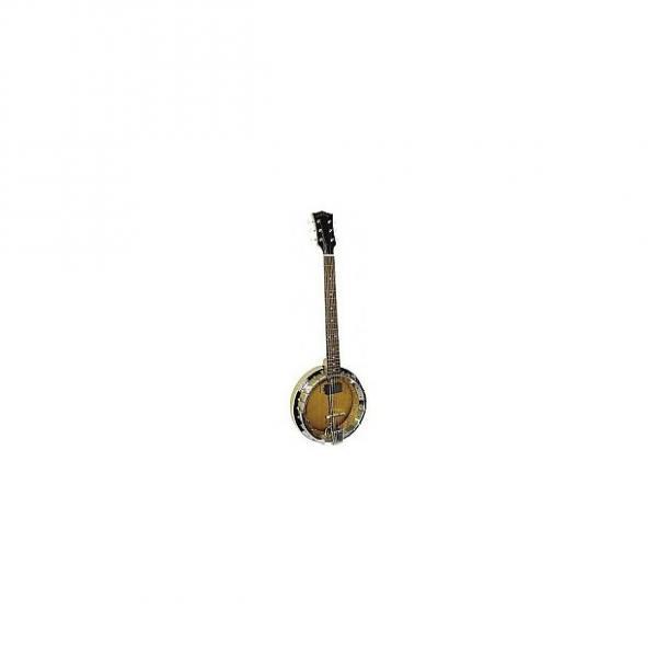 Custom Banjitar Gold Tone GT-500 #1 image