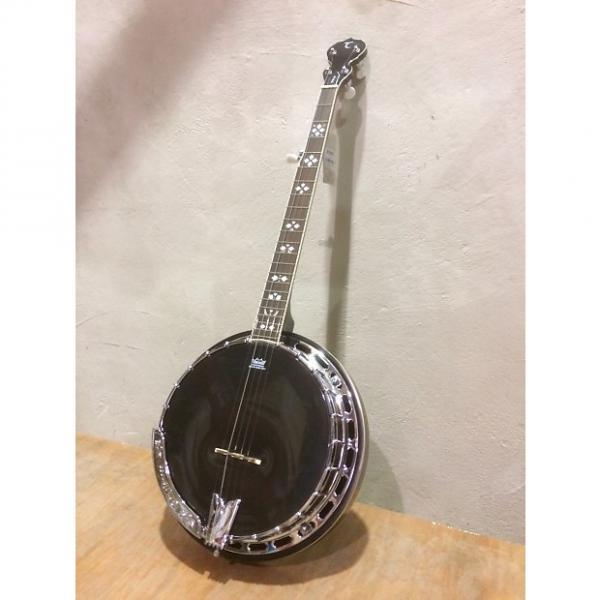 Custom Tanglewood TWB-C-5 5 String Banjo, 24 Brackets, Mahogany Resonator,Tone Ring,  Remo Black Head Hi Gl #1 image
