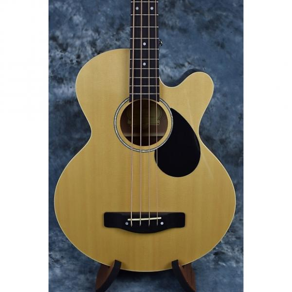 Custom Greg Bennett AB2 Acoustic Bass with Pickup #1 image
