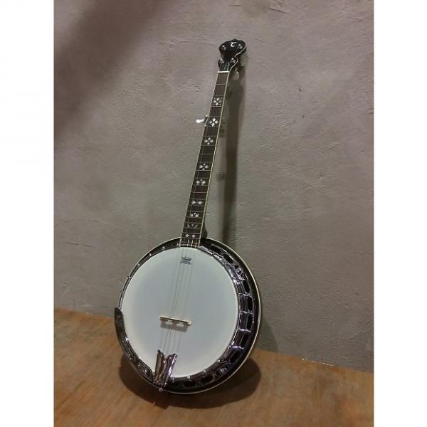 Custom Tanglewood TWB-USA-5 5 String Banjo, 24 Brackets, Remo Vintage Renaissance Head,  Tone Ring,  Mahogany Resonator HI Gloss Finish #1 image