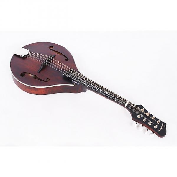 Custom Eastman MD305 All Solid Wood A Style Mandolin #1 image